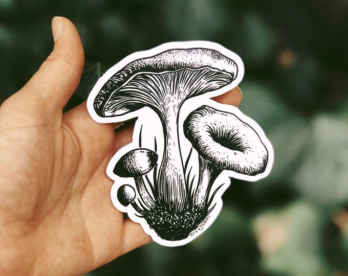 Mushroom VIII Vinyl Sticker