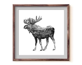 Moose + Alaskan Mountain Town