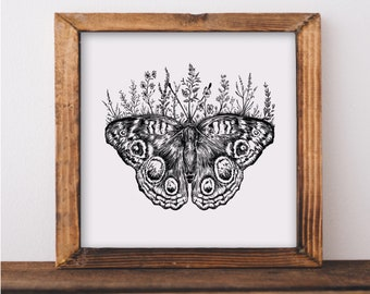 Floral Butterfly Fine Art Print