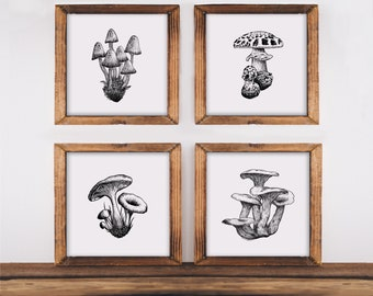 Set of 4 Mushroom Art Prints