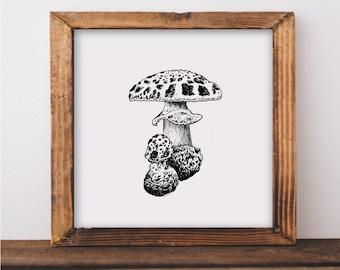 Mushroom I Fine Art Print