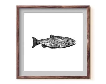 Salmon I