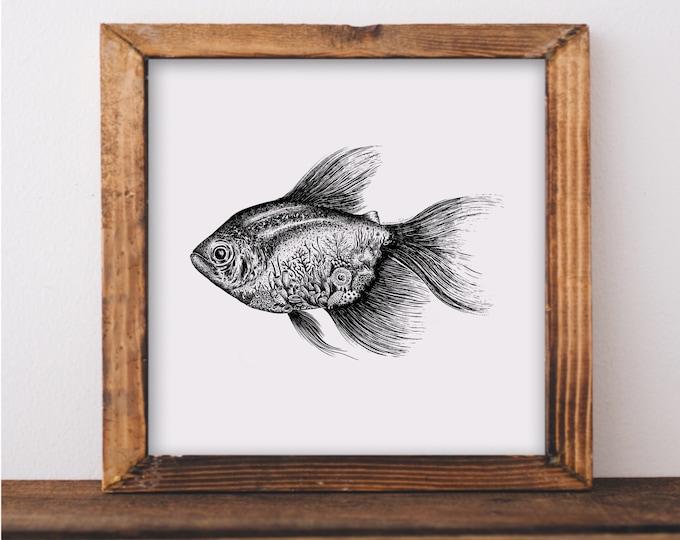 Tropical Fish + Coral Reef Art Print