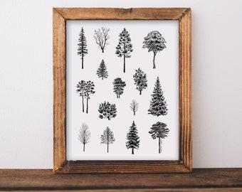 Tree Varieties Art Print