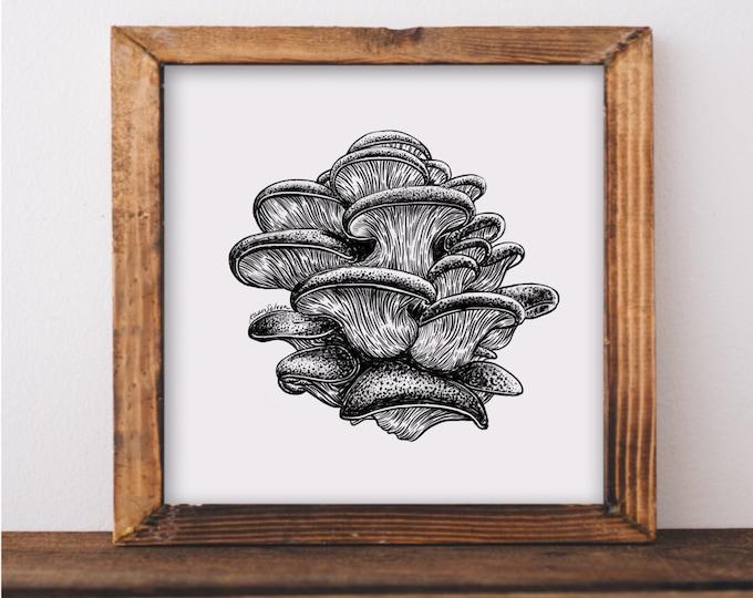 Mushroom IV Fine Art Print