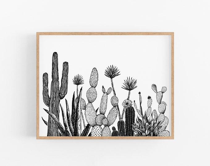 Growing Cacti Art Print