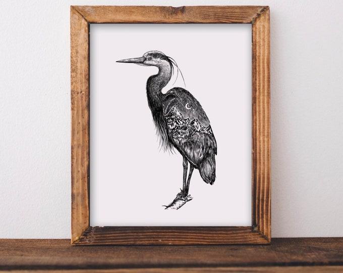 Mountainous Heron Fine Art Print
