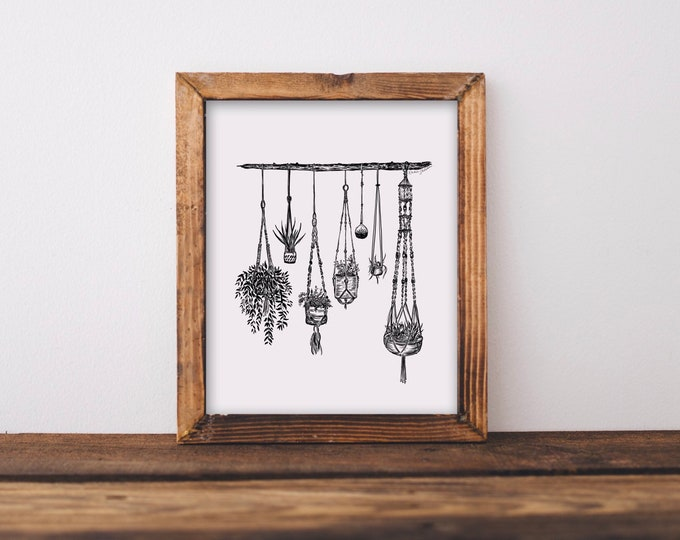 Hanging Plants Fine Art Print