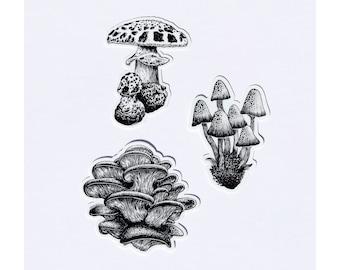 Art by Kaari Mushroom Sticker Pack (set of 3)