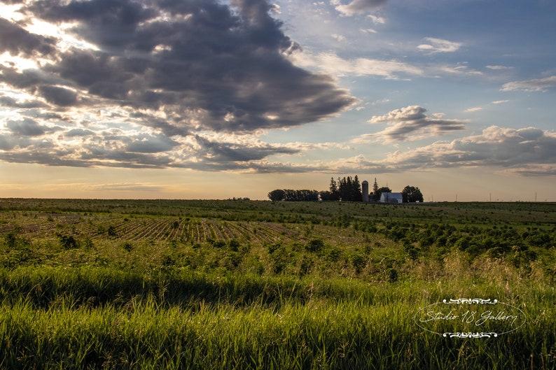 Photography  Iowa Farm at Sunrise Photographic Prints  image 0