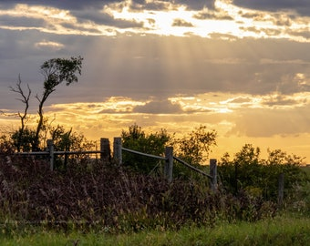 Farmer's Fence Posts at Sunset - Rural Tama County Iowa - Photography by Eleanor Caputo - Prints - Metals - Canvas Wrap - Greeting Card