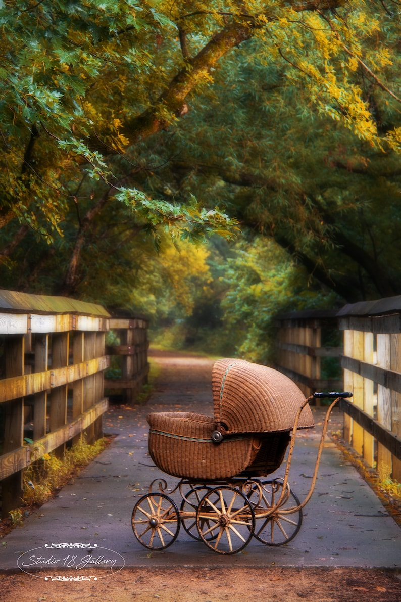 Baby Buggy  Pram Photography by Eleanor Caputo  Prints  image 0