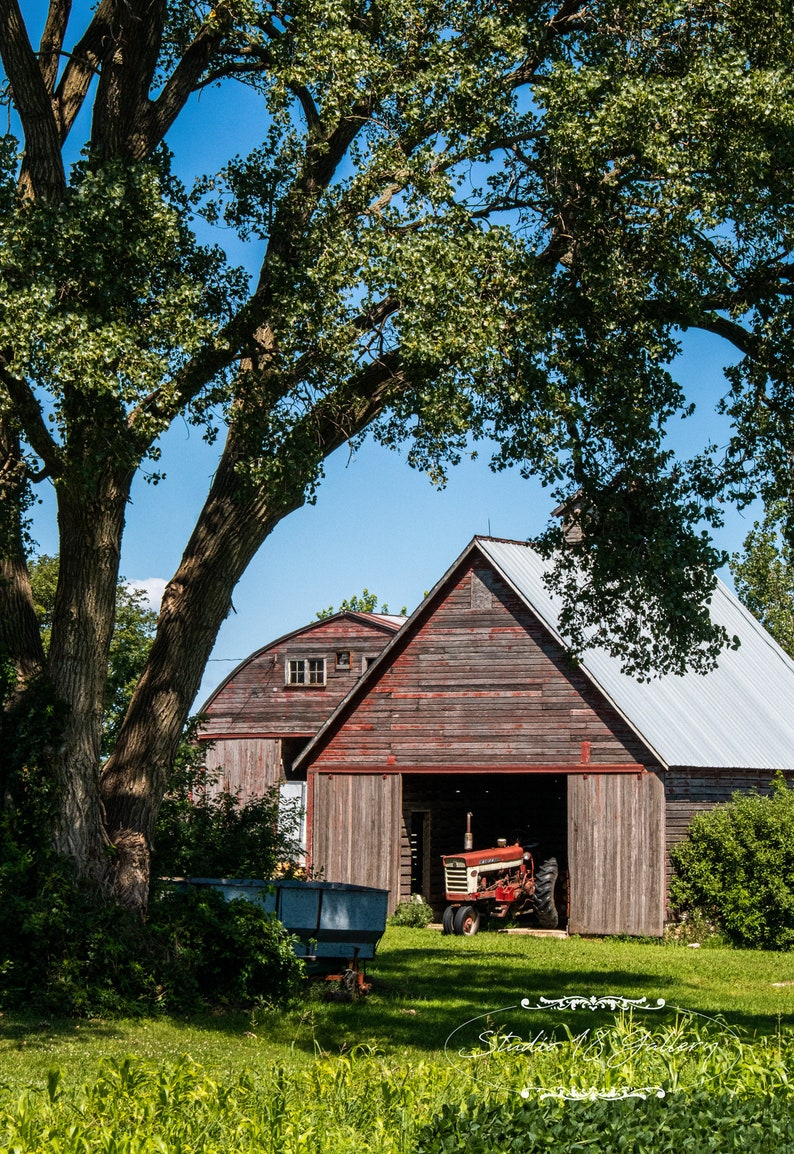 Iowa Photography by Eleanor Caputo  Ford Tractor in Rustic image 0
