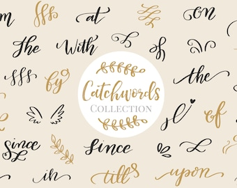 Digital Download Clip Art, Catchwords and Swashes, Vector Hand Lettering ClipArt, Typography, Hand Lettered Catchwords, Flourishes Graphics