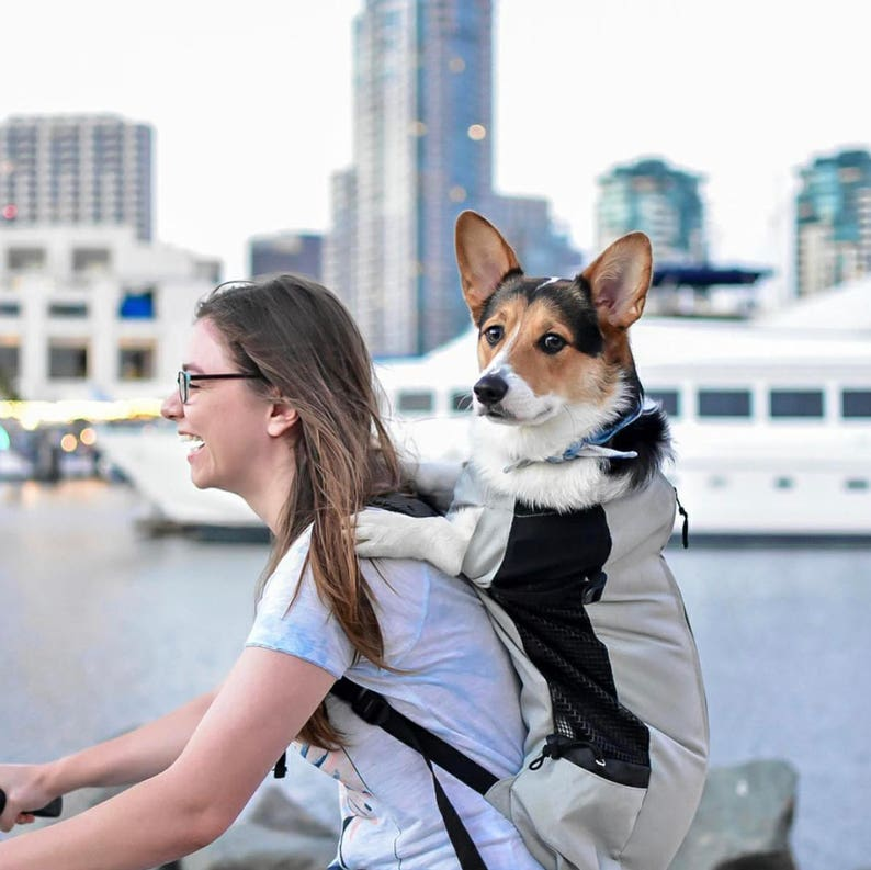 9817a86c369b K9 Sport Sack AIR Dog Carrier Backpack Pet Carrier