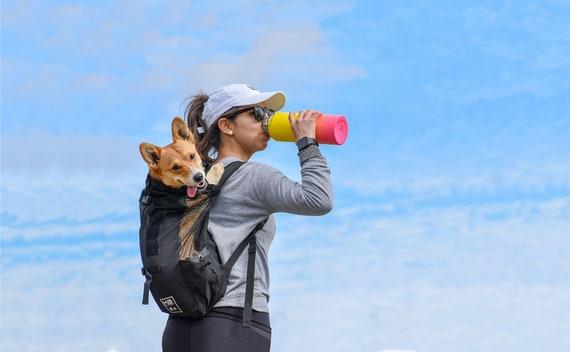 Beagle Pet Dog Backpack Handbag Purse Sports Bottle Keychain Tassel Charm