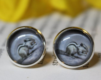 8 Squirrel Connector Charms Antique Silver Tone Chipmunk on a Branch SC553