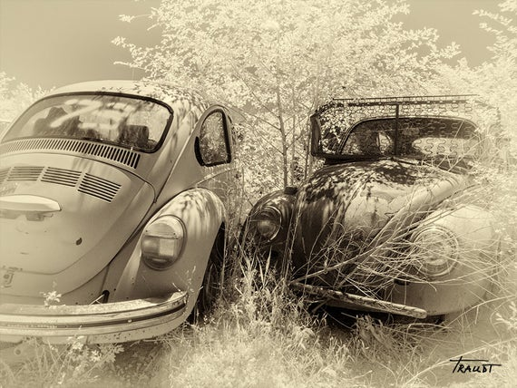 Steve White Vw >> Volkswagen Beetle Black And White Vw Rusty Vw Car Retro Volkswagen Steve Traudt Home Office Decor Wall Art