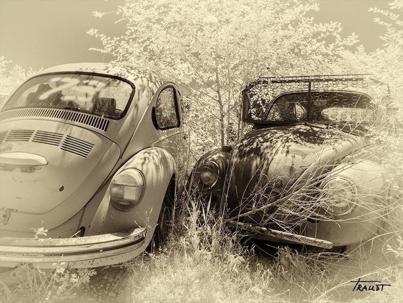 Steve White Vw >> Volkswagen Beetle Black And White Vw Rusty Vw Car Retro Etsy