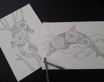 Dolphin and Seahorse, Ocean and Sea  - Adult Colouring Pages