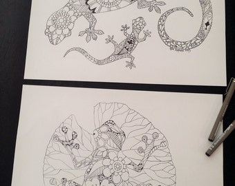 Frog and Lizard or Gecko - Adult Colouring Pages
