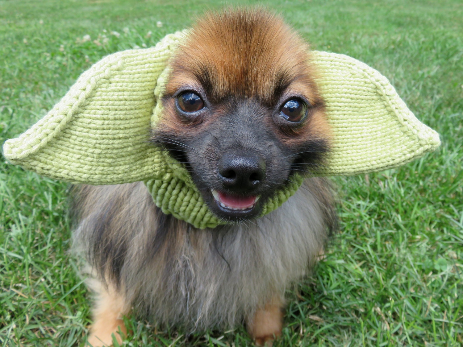 Yoda Inspired Hat For Dogs Star Wars Costume Dress Up Hand
