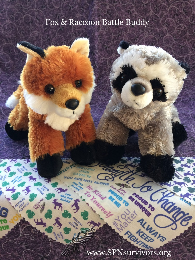 Fox & Raccoon Battle Buddy healthy coping skills mental image 0