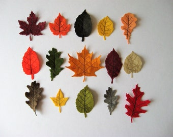 Autumn Leaf Decor. Handmade Felt Autumn Leaves. Thanksgiving Decor. Set of 15 Autumn Leaf Decorations