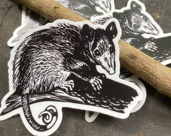 Weatherproof Possum Sticker for thermos, bicycle or car!