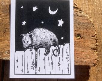 Possum Postcard