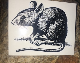 House Mouse Vinyl Sticker Antique Book Illustration