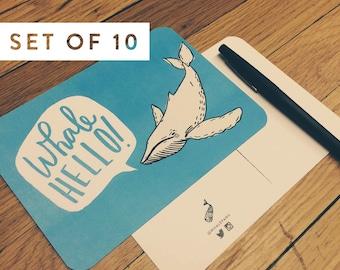 Whale Hello   Postcard Set