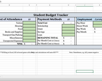 Excel College Year Cost Budget Automated Calculations, Editable Sheet for Students, Printable Download Digital Media File, Financial Tracker