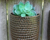Small Hanging Wall Planter with Hand Carved Texture