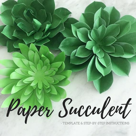 Paper Succulent Plant Template Succulent Template Plate Etsy