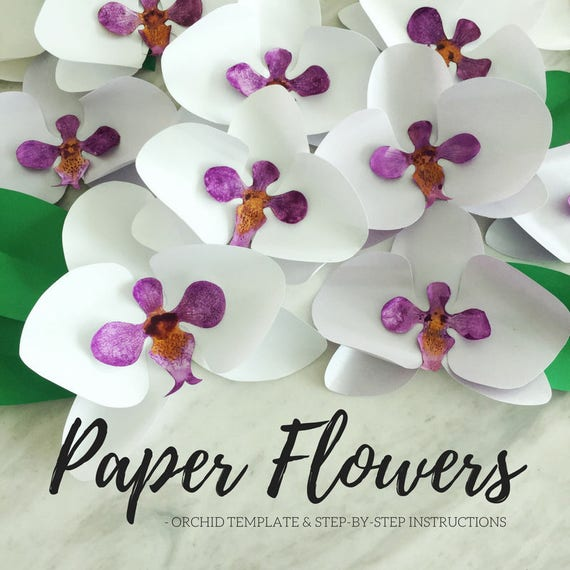 paper flower template paper orchid template flower etsy