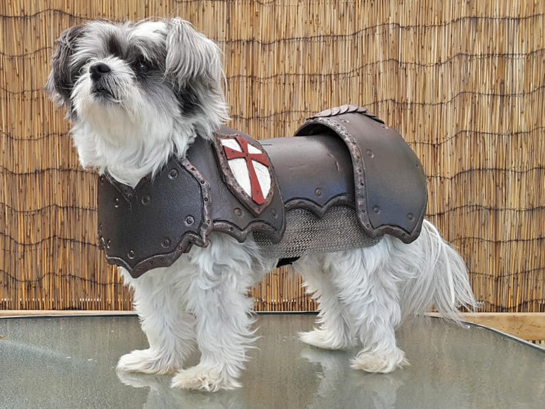 Cosplay DIY Prop Basic Dog Armor / Armour Costume Pattern image 1
