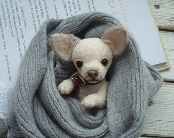 Mini Teddy chihuahua 6 in  Favorite pet to order on the photo Best gift for dog lovers