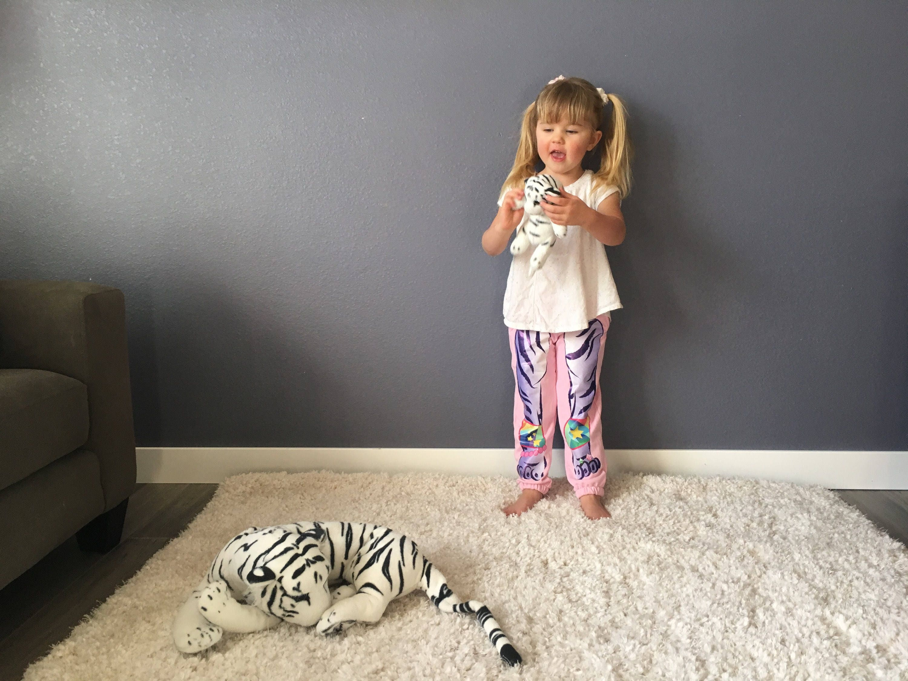 tiger pants, kids sweatpants, kids joggers, wild kratts, cute kids