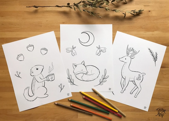 Download 3 Thematic Animals of the Forest Coloring