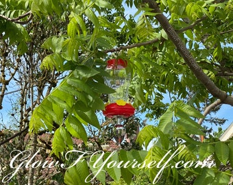 Hummingbird feeder and or butt plug! Mature adults only, tf wrong with you
