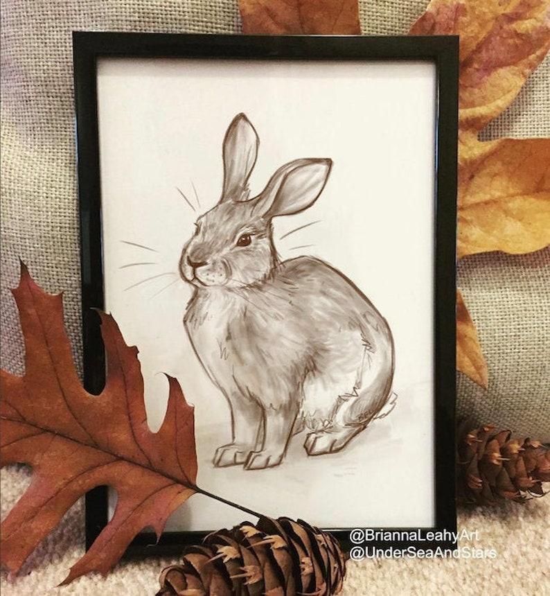 Rabbit Wall Art Brush Rabbit Printable Art Oregon Wildlife image 0