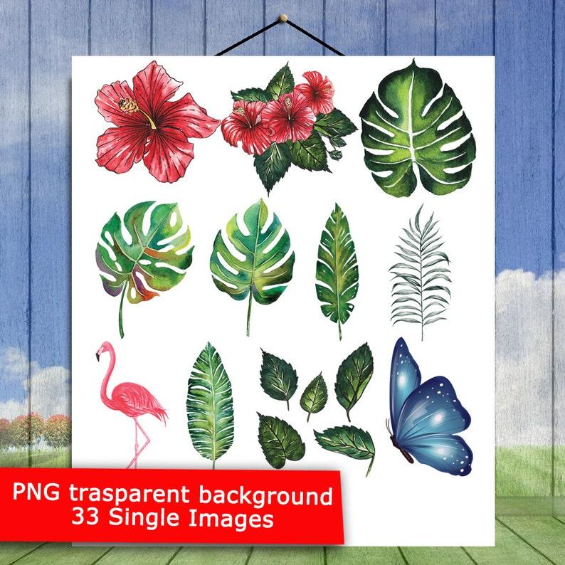 Leaves Clip Art Tropic Plants Jungle Plants P1 Palm Leaves Watercolor Clipart Instant Download Sheet 33 Tropical Clipart Pack