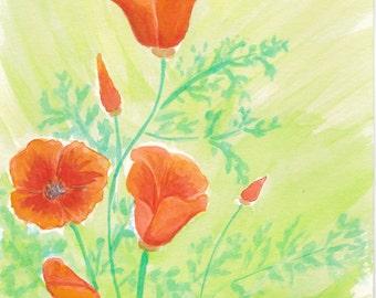 Original Watercolor Painting, California Poppies
