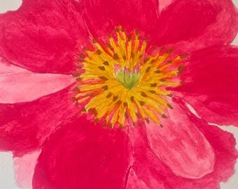Water colour, happy pink poppy
