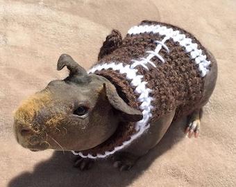 Guinea Pig Football Sweater, Skinny Pig Sweater, Guinea Pig Clothes, Football Pet Sweater, Hairless Guinea Pig, Crochet Pet Sweater