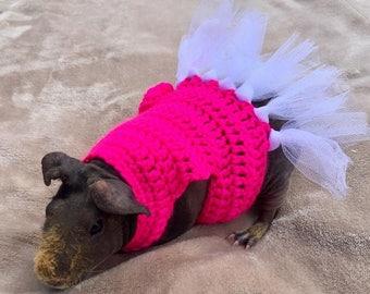 Guinea Pig Ballerina Costume, Guinea Pig Clothes, Skinny Pig Sweater