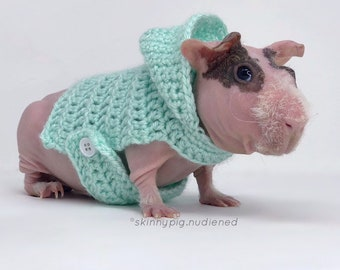 Guinea Pig Hoodie, Guinea Pig Clothes, Guinea Pig Sweater, Skinny Pig Sweater, Small Pet Clothes, Cavy Accessories, Hairless Guinea Pig
