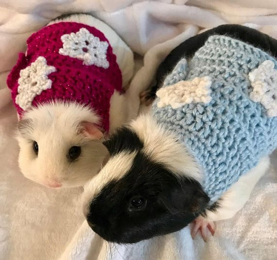 Guinea Pig Snowflake Sweater, Christmas Sweater, Guinea Pig Clothing,  Skinny Pig Sweater, Cavy Accessories, Hairless Guinea Pig - Guinea Pig Snowflake Sweater Christmas Sweater Guinea Pig Etsy