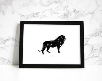 Leo Constellation - The Lion